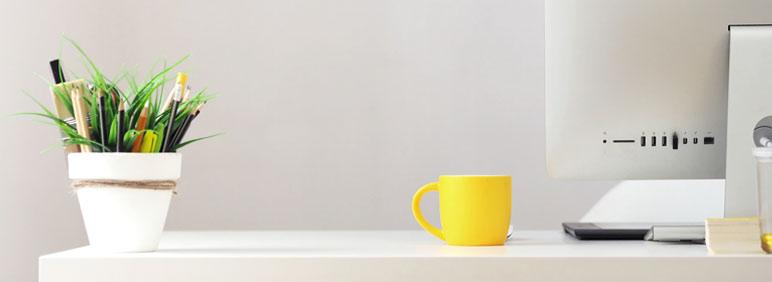 ¿Cómo elegir decoración de oficina?